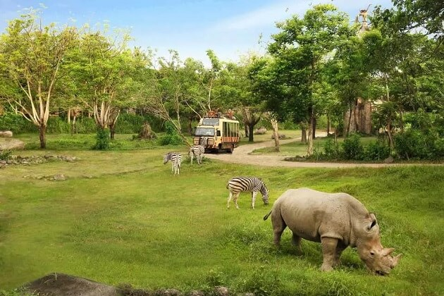 Bali Safari - bali family trip