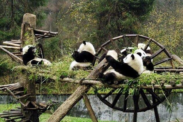 Dengsheng Gorge - china panda tours