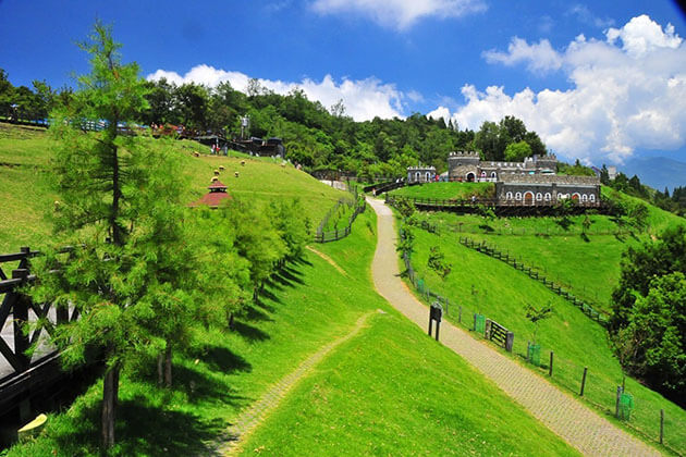 Farm Stay Experience - taiwan tours