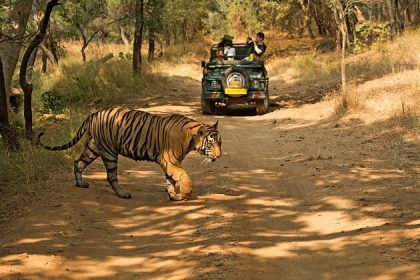 Indian Golden Triangle and Wildlife Tour – 10 Days