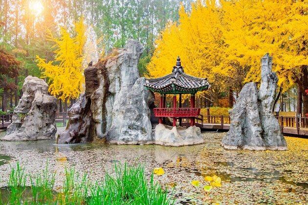 Nami Island - korea best attractions