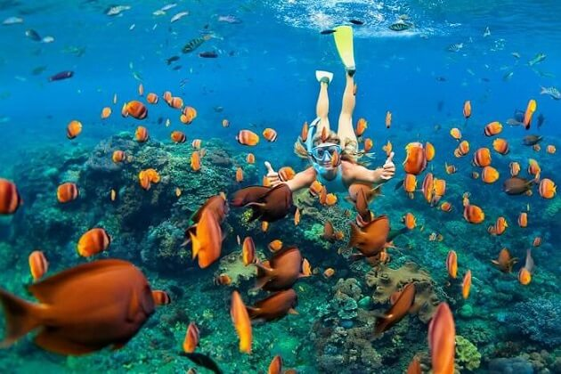 Snorkeling in Rabbit Island - cambodia tours