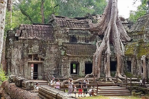 Ta Prohm - indochina family tour