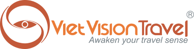 Viet Vision Travel logo
