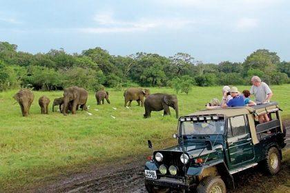 Yala National Park - nepal india and sri lanka tour
