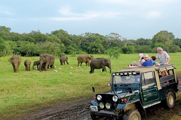 Yala National Park - nepal india and sri lanka tour