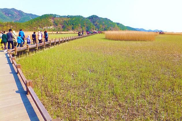 Yongsan Observatory