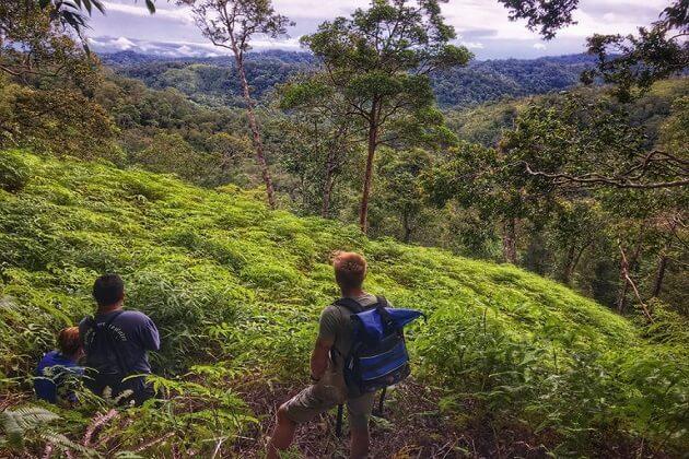 best borneo jungle tours