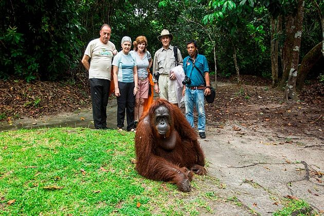 borneo rainforest - best southeast asia tours