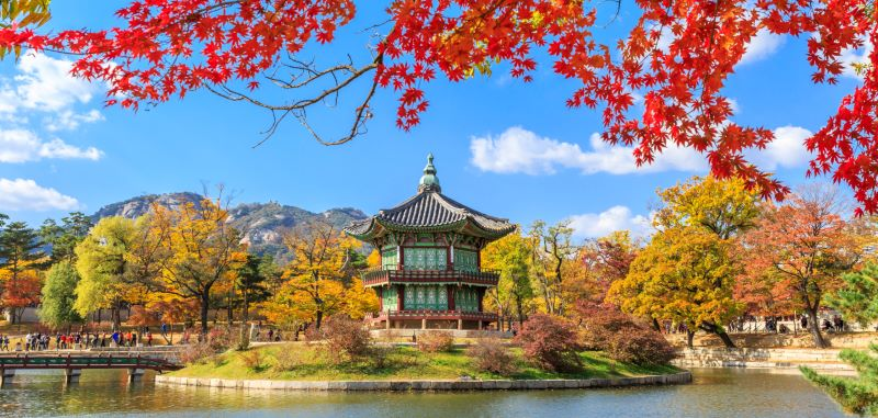 east asia tour packages to south korea