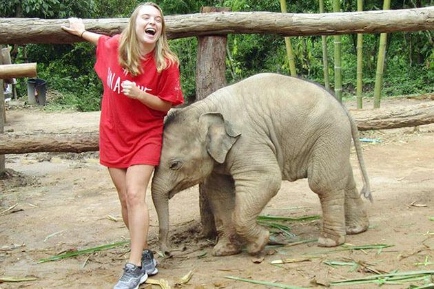 elephant experience - thailand vacation