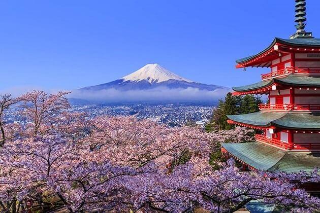 japan korea taiwan tour - 12 days