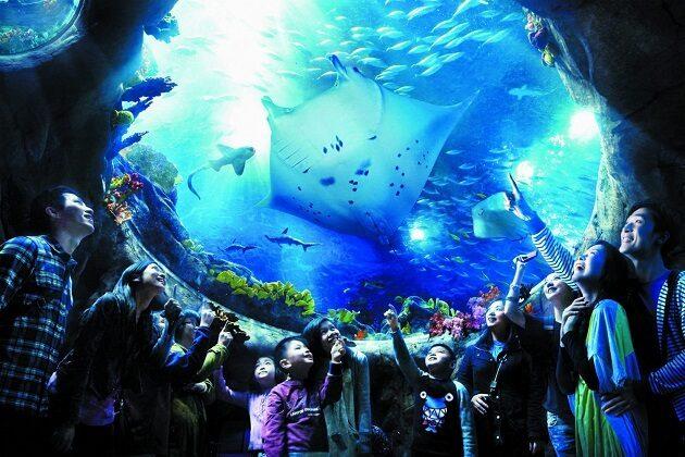 ocean park - hong kong tour package