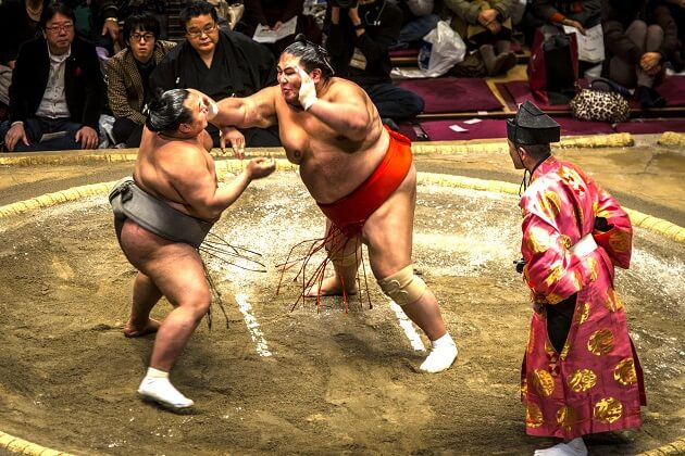 sumo wrestlers - travel packages to east asia