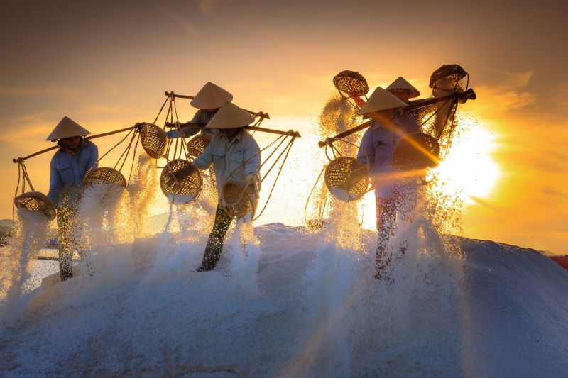 visit salt field asia holiday packages